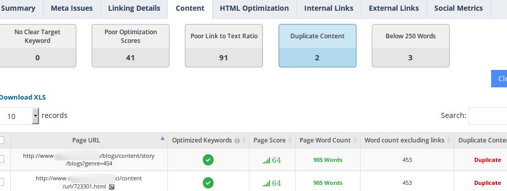 website-audit-duplicate-content