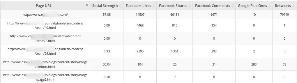 website-audit-social-metrics