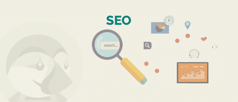Increase Your Local SEO Visibility